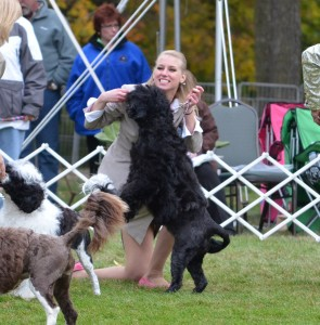 Willow & Natasha having fun in the breed ring 2012 PWDCA National